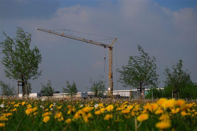 2010-04-30_29.JPG
